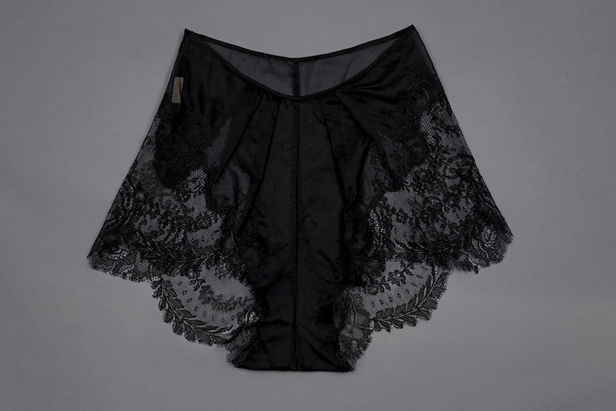 Sheer nylon and lace appliqué tap pants by Juel Park Photography by Tigz Rice Studios The Underpinnings Museum